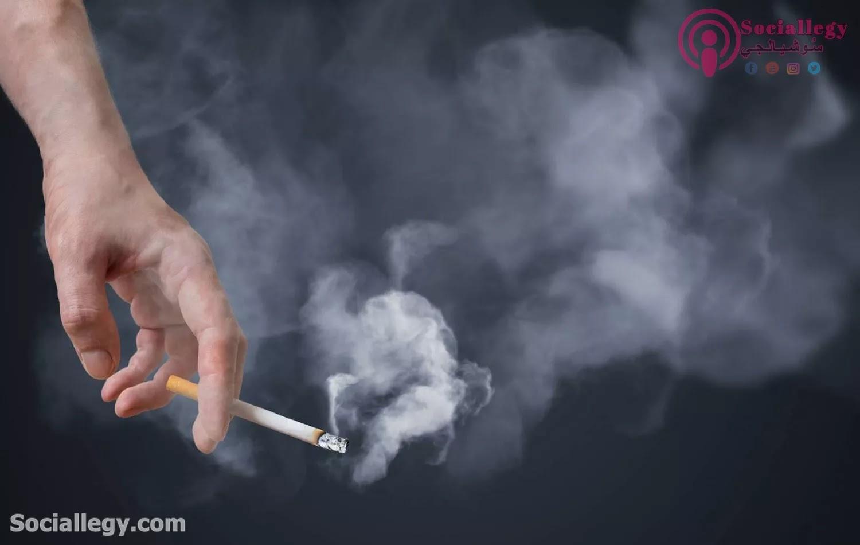 نشأة التدخين ودور العالم فى مواجهتها