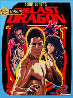 El Ultimo Dragon [1985] HD [1080p] Latino [GoogleDrive] SilvestreHD