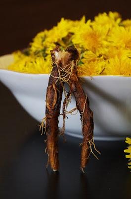 herbal, Manfaat Tanaman Herbal, dandelion, akar dandelion, kegunaan dandelion, kandungan gizi dandelion, kandungan nutrisi dandelion, teh dandelion,