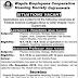 Federal Science Colleges (Boys-Girls) Wapda Town Gujranwala Jobs