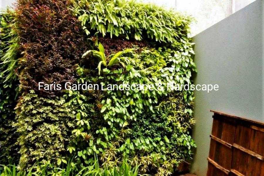 Jasa Pemasangan dan Pembuatan Taman Vertikal Garden