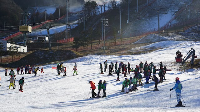 Winter resort paradise of Korea