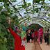 Taman Agro Inovasi TPHP Muba Ramai dikunjungi Warga