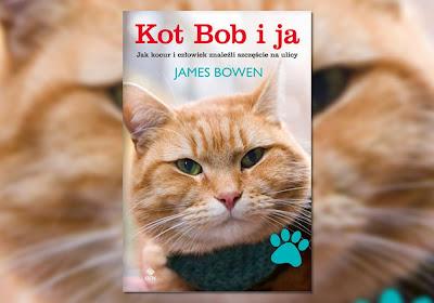 Znalezione obrazy dla zapytania kot bob i ja lubimy czytać