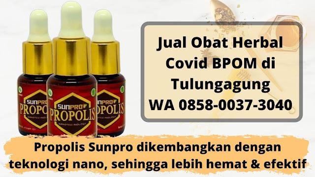 Jual Obat Herbal Covid BPOM di Tulungagung WA 0858-0037-3040