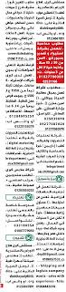 اعلانات وظائف جريدة الوسيط الاثنين 2 نوفمبر 2020