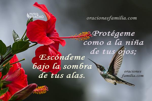 imagen cristiana de proteccion oracion a Dios salmo protegeme como a la niña de tus ojos cuidado de Dios merybracho