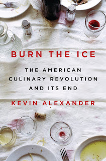Review of Burn the Ice by Kevin Alexander