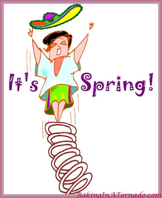 It's Spring: A humorous look at rushing the season | www.BakingInATornado.com | #MyGraphics
