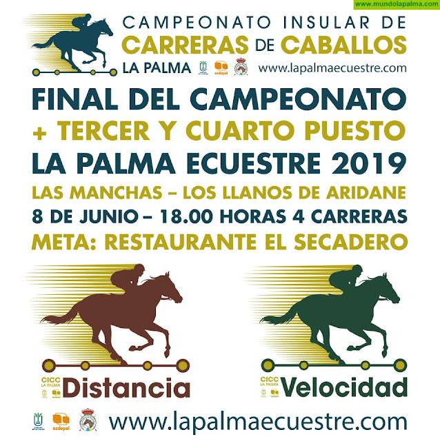 El Campeonato Insular de Carreras de Caballos se decide este sábado en el Valle de Aridane