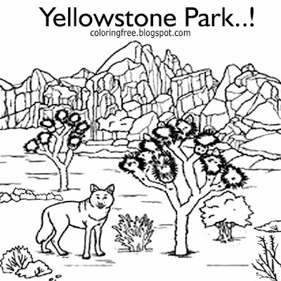 American wolf realistic printable Yellowstone national park wildlife animal coloring page for adults