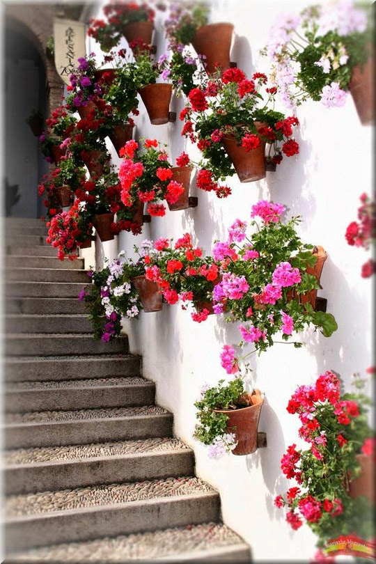 planters on the wall