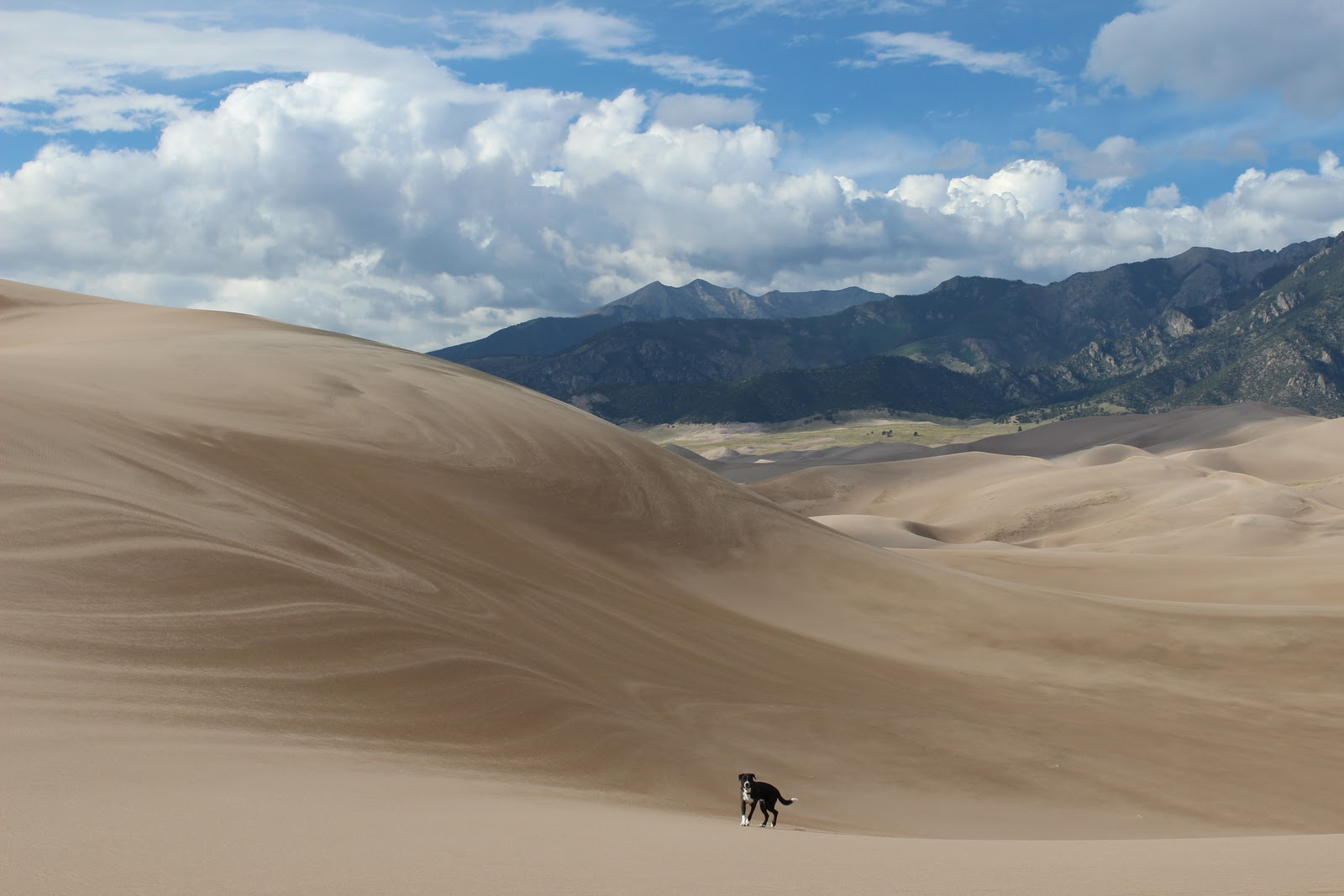 4 Things the Great Sand Dunes taught me about Fixer Upper ... |Great Sand Dunes