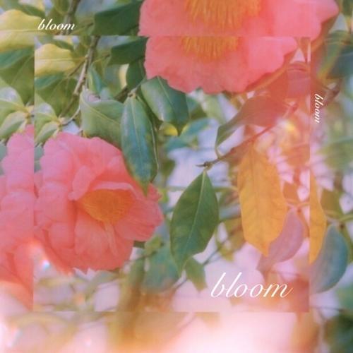 LoveSong – Bloom – Single