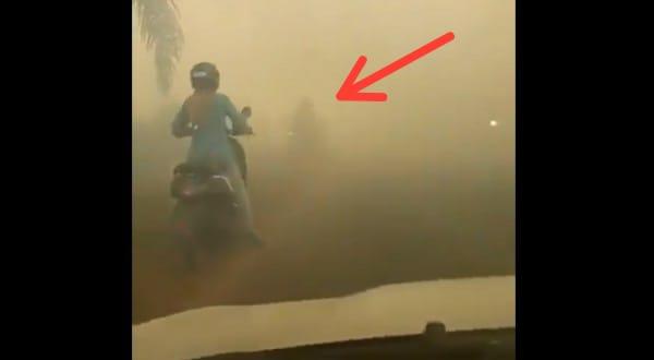Viral Video, Asap Karhutla Yang Berujung Petaka