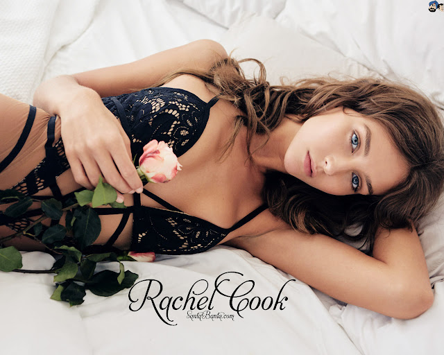 Beautiful Actress Rachel Cook HD Wallpaper