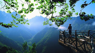 Girl see nature distance imagination