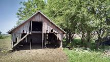 Poor Farm Barn In Absentia