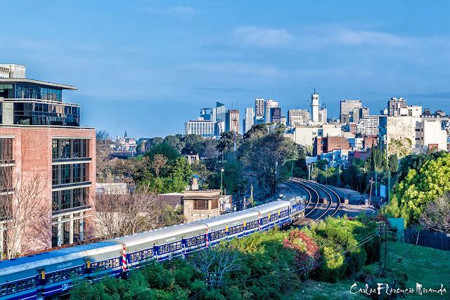 Un tren pasando ,una curva y la ciudad al fondo.