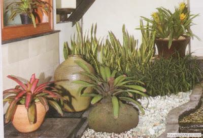 Landscape-taman-kering-indoor