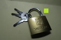 Schloss und Schlüssel: Dietrich-Set für Beginner & Fachkräfte - 11 Stück Schlosser-Dietriche (9 Dietriche & 2 Spanner) + 2 Vorhängeschlösser (durchsichtiges Übungsschloss + echtes Schloss)