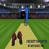 Online cricket tap catch game