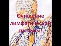 Лимфатическая система - очистка лимфатической системы