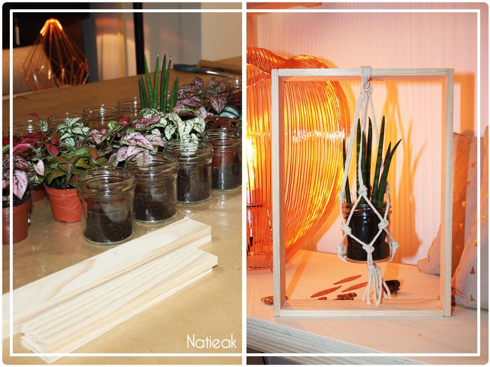cadre suspension pour plante végétale