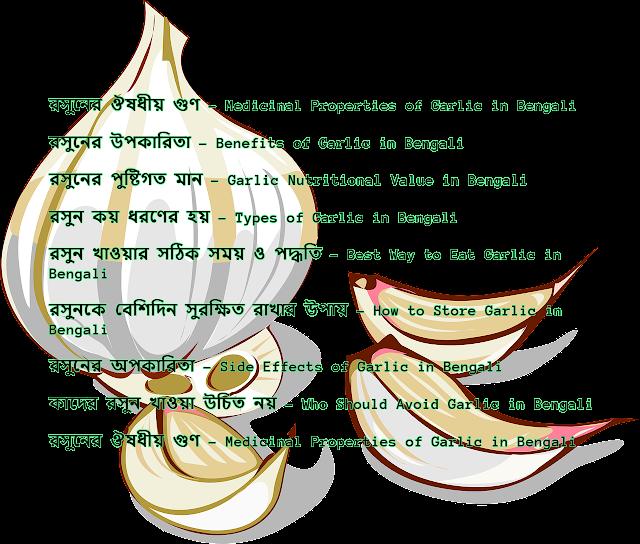 রসুনের উপকারিতা, ব্যবহার এবং অপকারিতা – Garlic (Lahsun) Benefits and Side Effects in Bengali