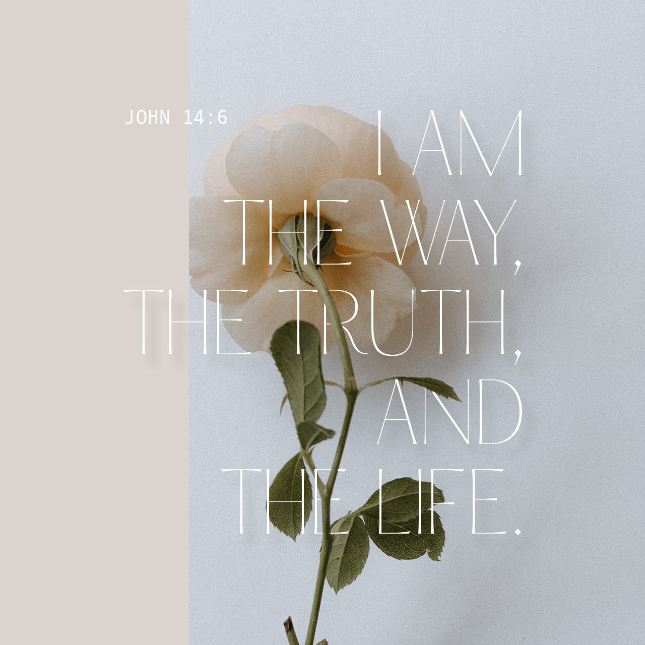"Jesus answered, ""I am the way and the truth and the life. No one comes to the Father except through me. John 14:6 NIV https://john.bible/john-14-6"
