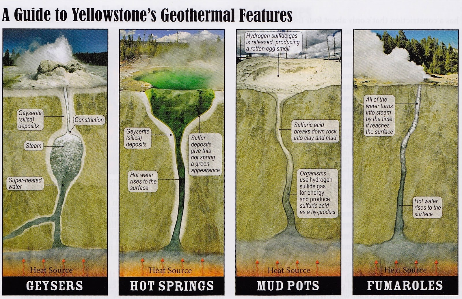 Yellowstone Volcano Diagram Pioneer Deh P4200ub Wiring Drawing Of How A Geyser Erupts Diagrams Repair