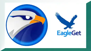 تحميل برنامج EagleGet