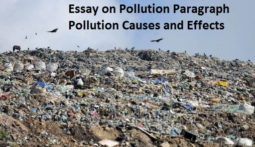 Causes and effect of pollution essay Homework Academic Service - pollution essay