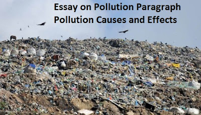 noise pollution causes and effects essay