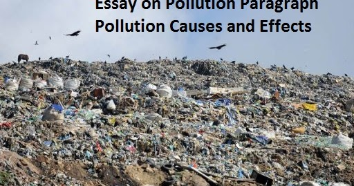Essays on pollution