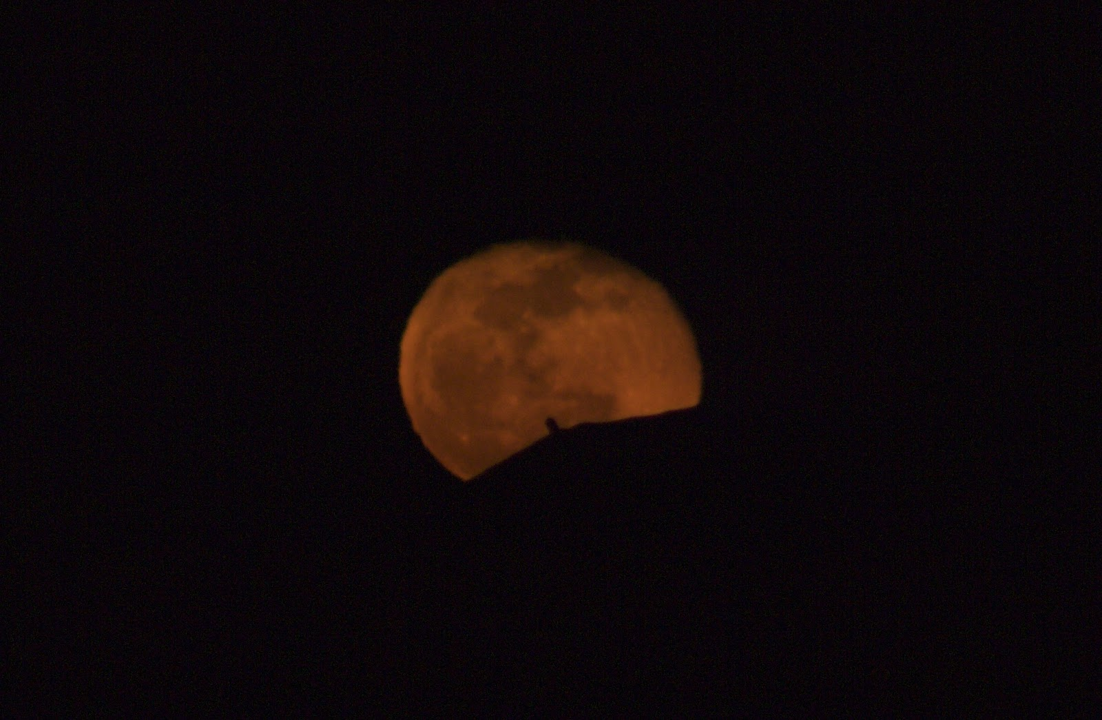 orange moon rising over house