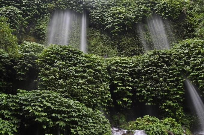 Benang Kelambu Waterfall Tour
