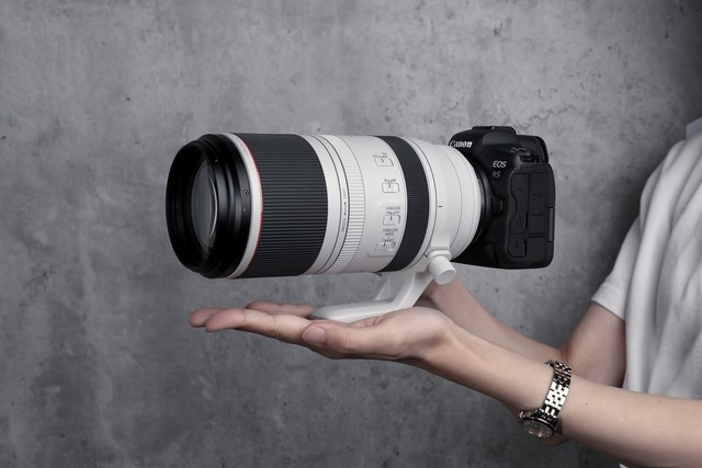 Canon RF100-500mm F4.5-7.1 Lens Review