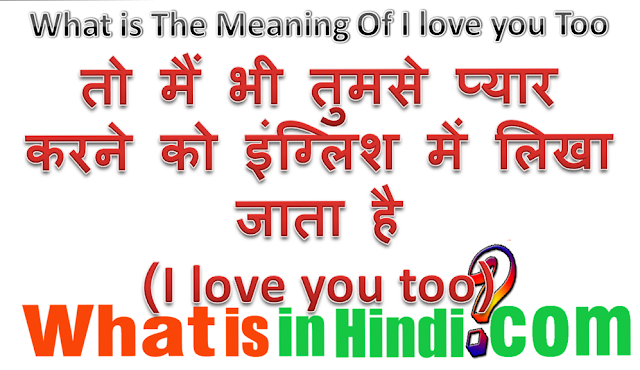 i also love you meaning in hindi