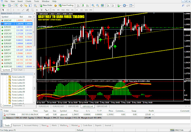 Forex success network