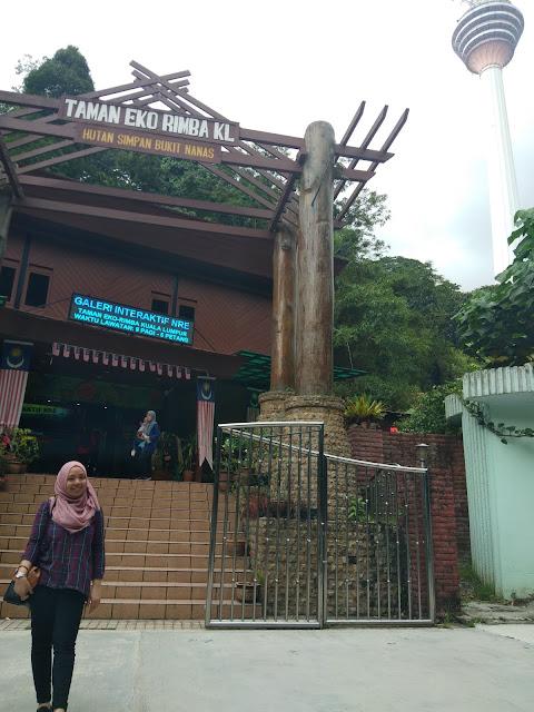 Bersiar-siar ke Taman Eco Rimba KL, Bukit Nenas