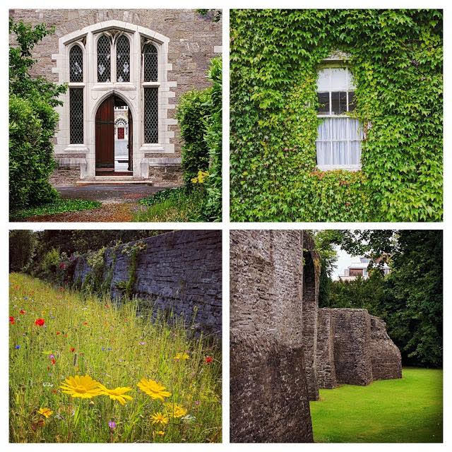 Travel Ireland by Train from Dublin: Instagram photos from a photowalk in Maynooth