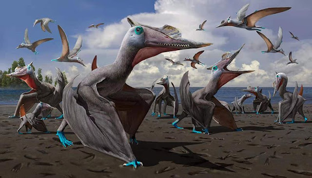 Chinese scientists confirm new dinosaur species found in Xinjiang