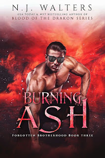Burning Ash by NJ Walters