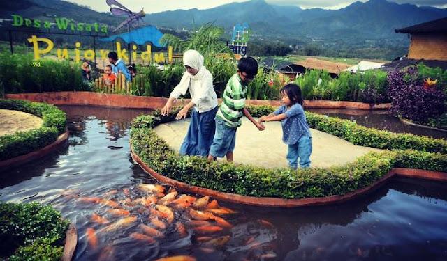 Playground Tengah Sawah Desa Wisata Pujon Kidul, Malang
