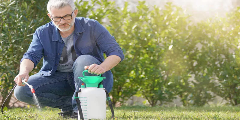 How to Choose the Best Weed Sprayer