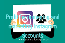 Profit by managing and marketing Instagram accounts