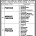 Jobs in Suleman Roshan Medical College 2020