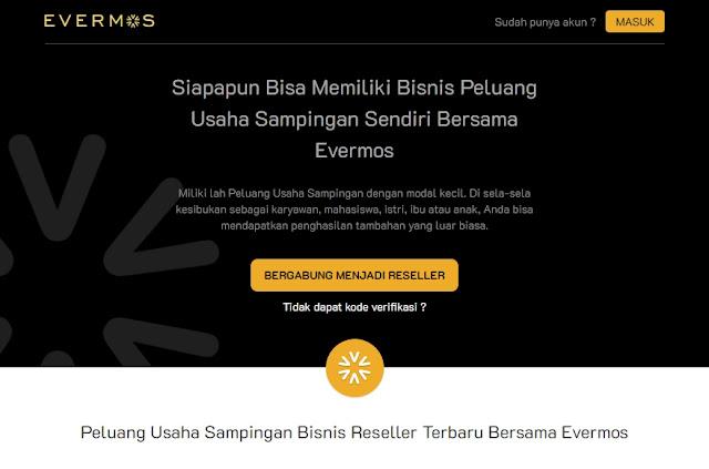Evermos, Peluang Usaha Sampingan yang Menjanjikan untuk Semua Kalangan