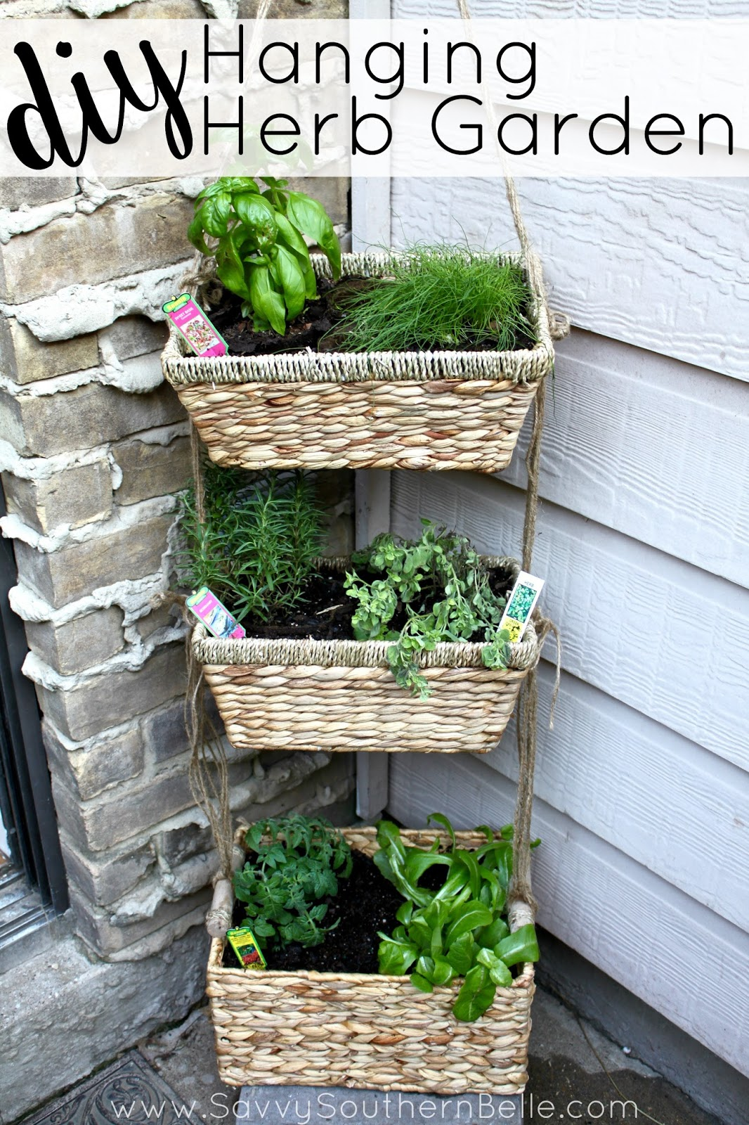 Tastebud travels diy hanging herb garden for Patio garden accessories